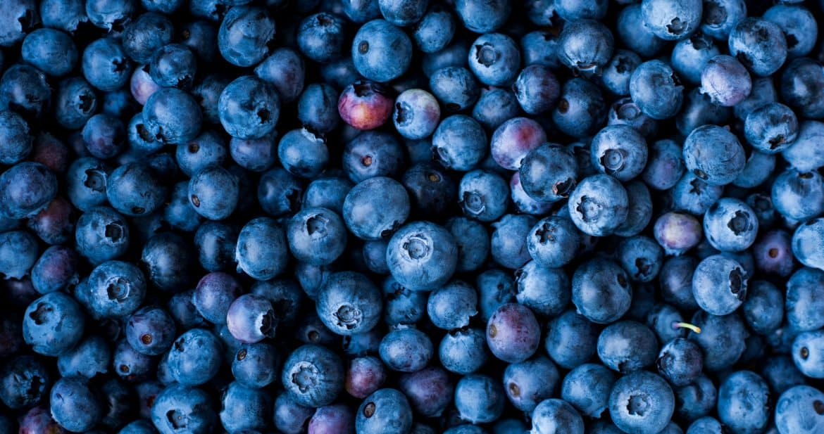 Overhead view of blueberries