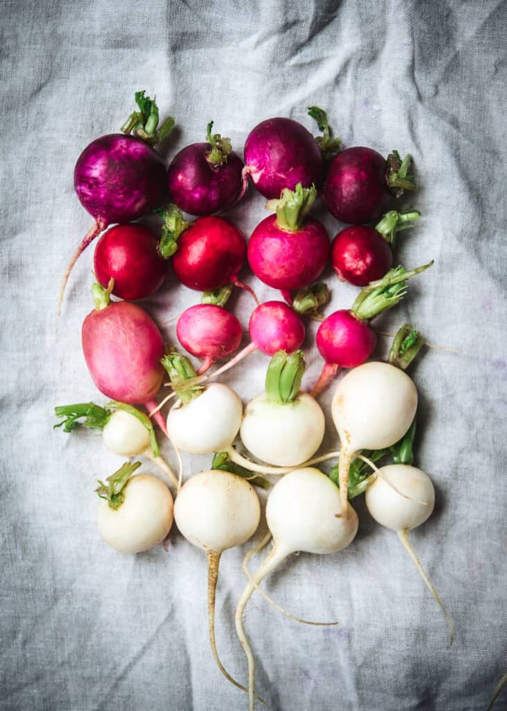 Overhead view of color gradient of Easter Egg radishes in purple, pink and white