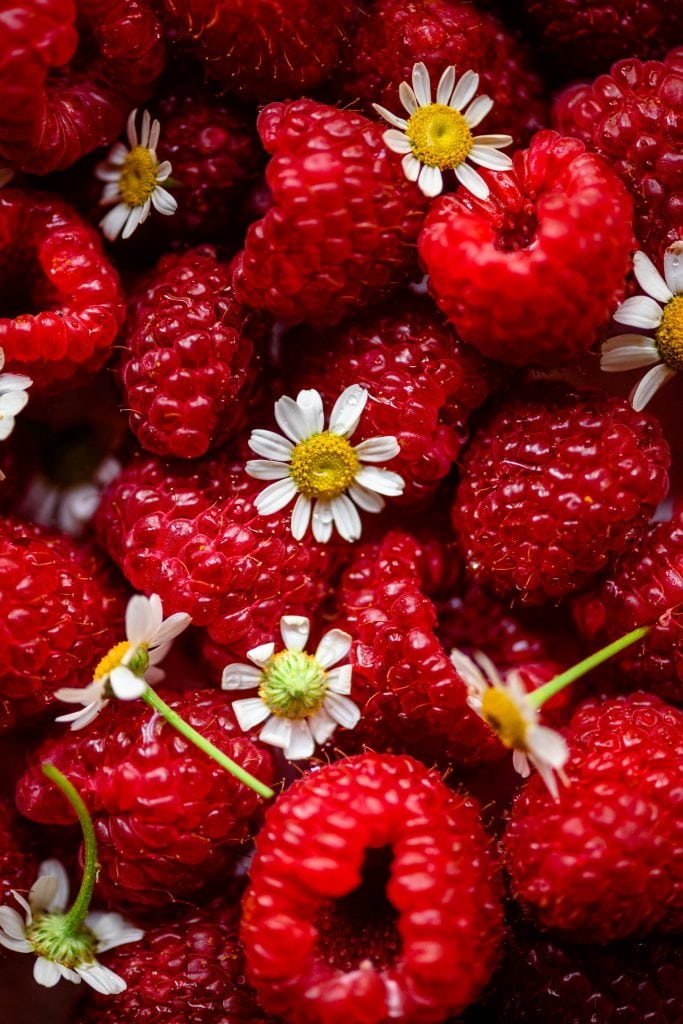 Close up overhead of raspberries and chamomile flowers