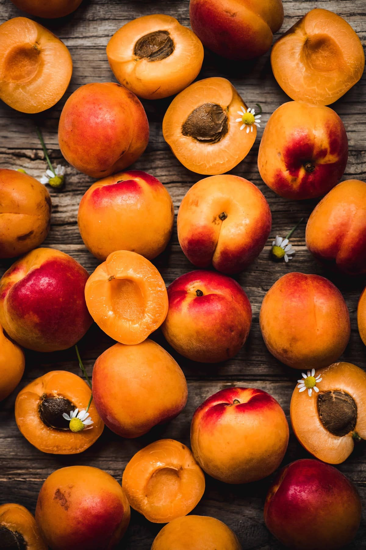 overhead view of beautiful fresh apricots with chamomile flowers on rustic wood background