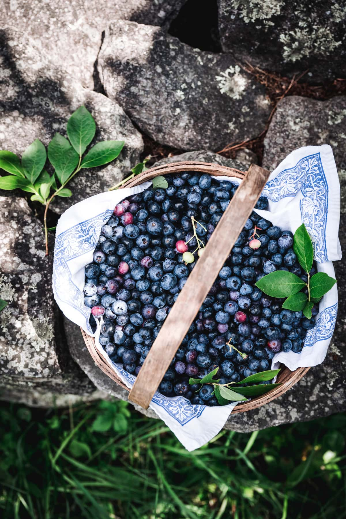 overhead view of blueberries in a basket on stone wall