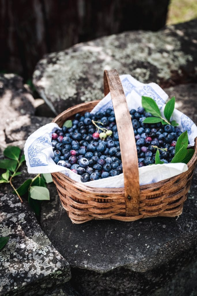 side view of blueberries in a basket on stone wall