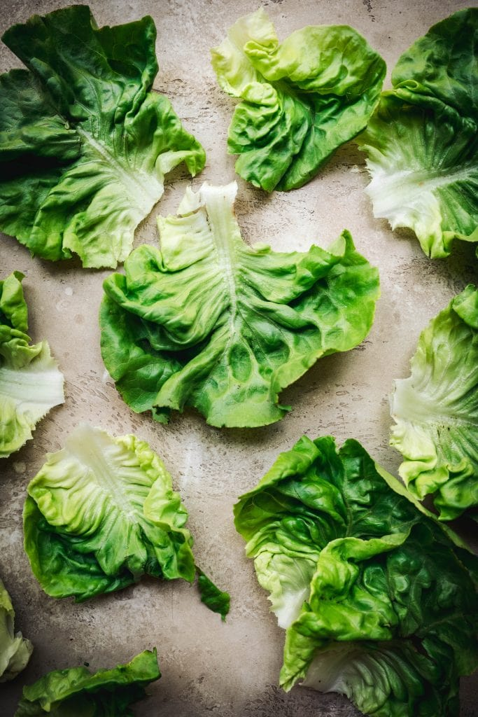 overhead of raw butter lettuce leaves on a work surface