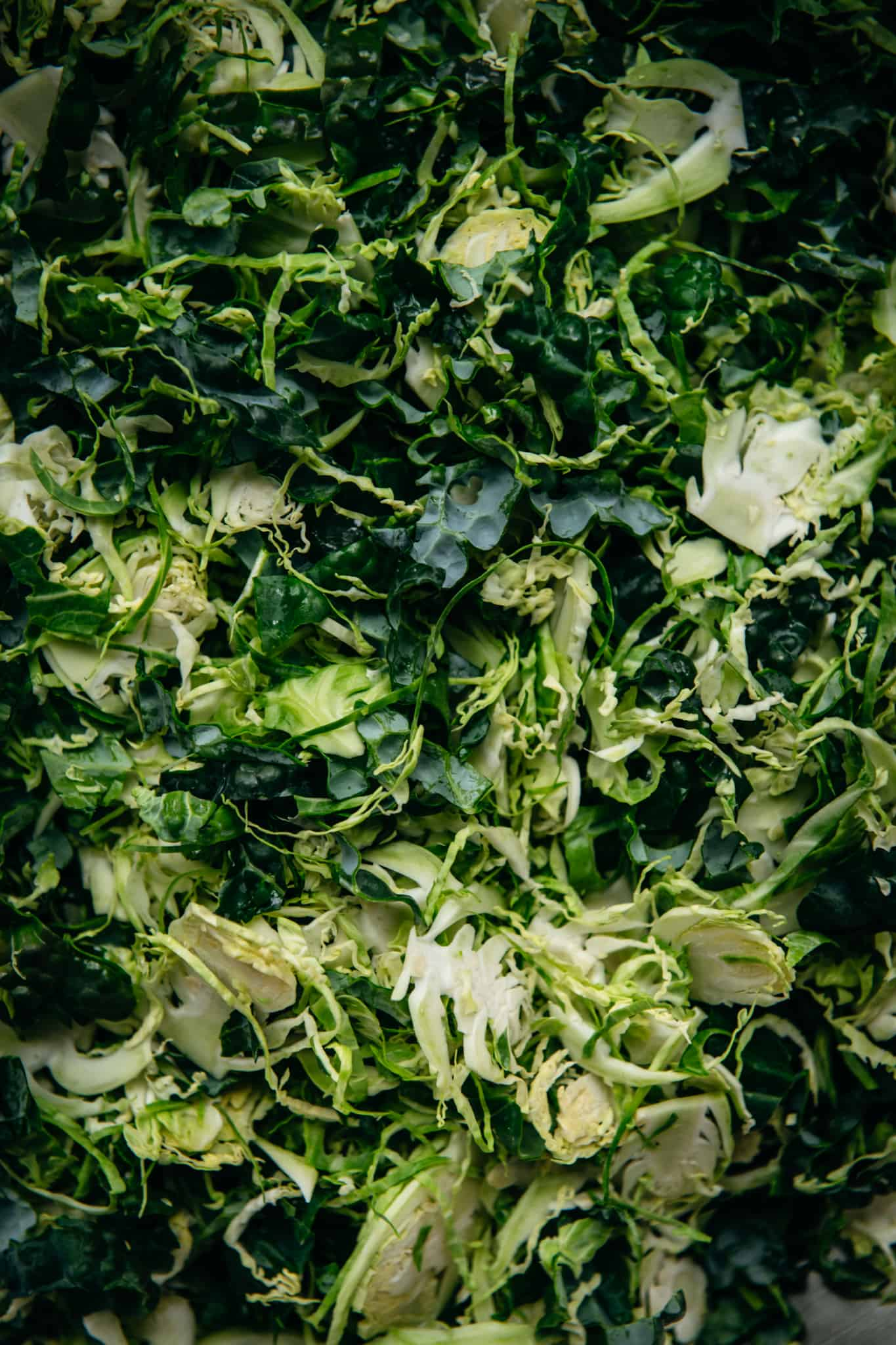 close up of shaved raw brussels sprouts