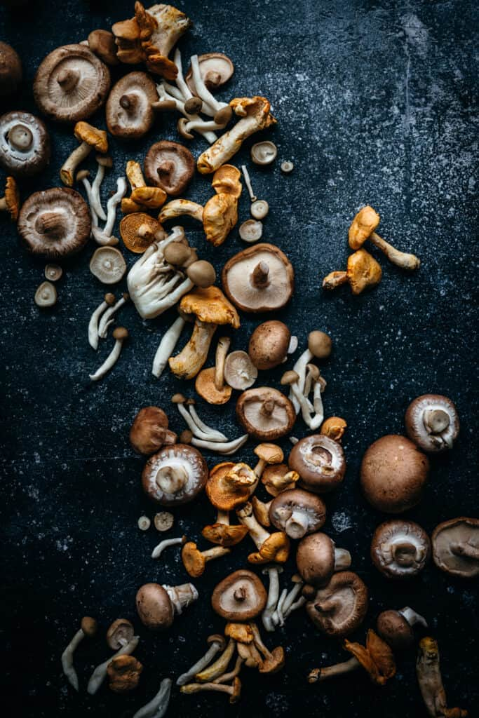 overhead view of beautiful wild mushrooms on dark surface