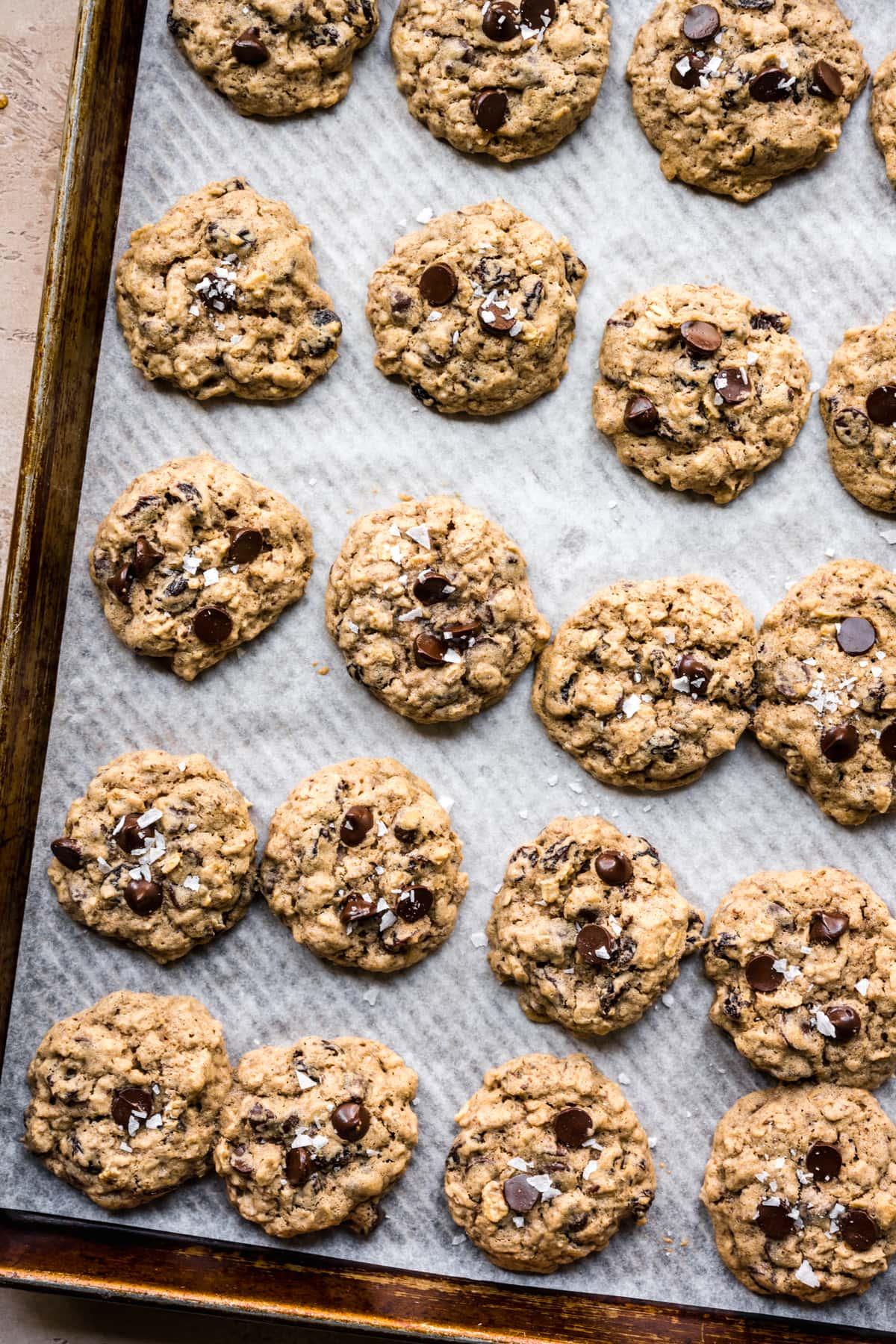 overhead view of vegan gluten free oatmeal raisin cookies on sheet pan