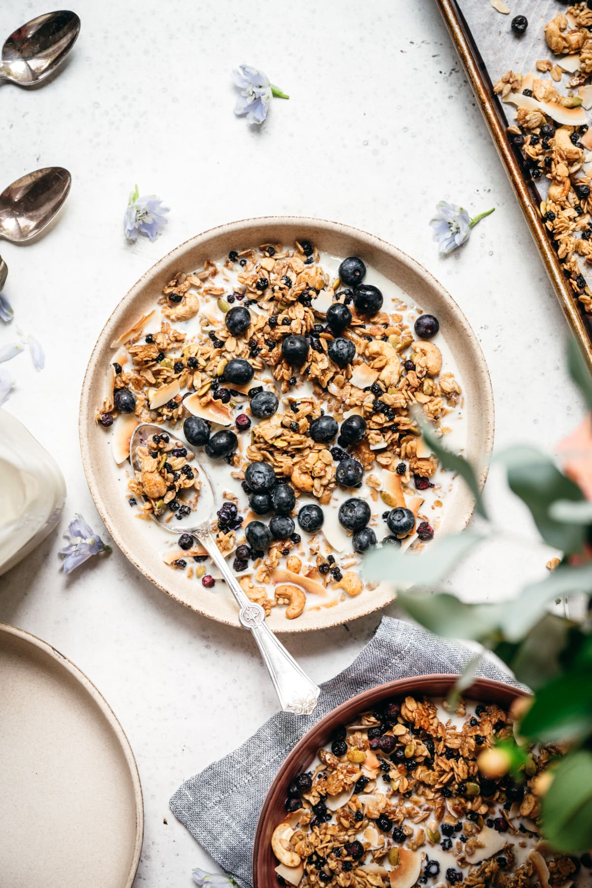 overhead view of blueberry lemon granola in a bowl with milk and blueberries