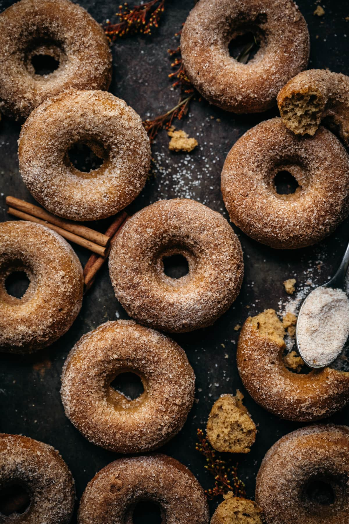 overhead view of vegan baked apple cider donuts with cinnamon sugar coating on a sheet pan.