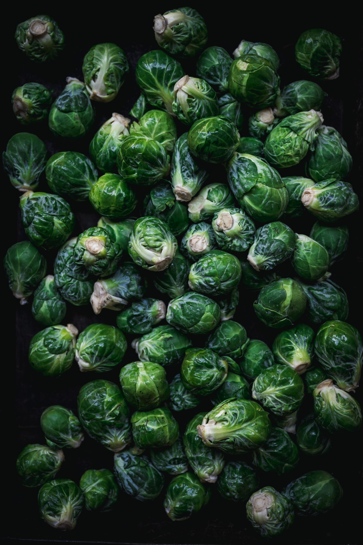 overhead view of raw brussels sprouts in a baking pan.
