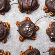 overhead view of vegan chocolate caramel pecan turtles on parchment paper.