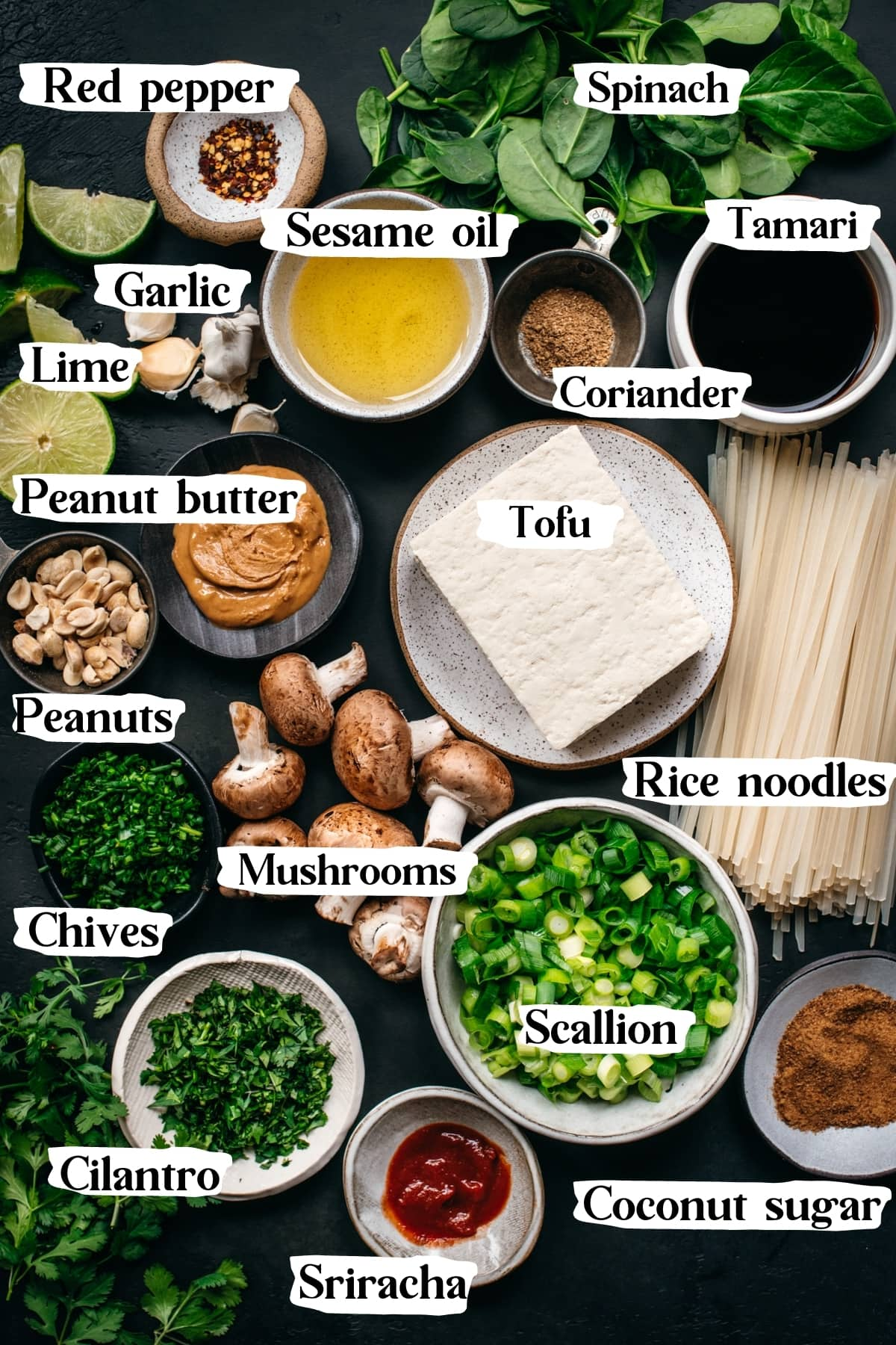 overhead view of ingredients for vegan pad thai with text labels.