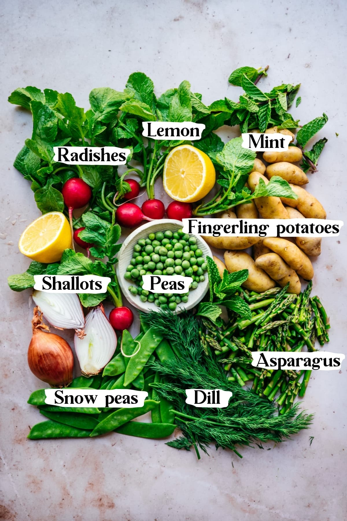 overhead view of ingredients for spring potato salad with asparagus, peas, snow peas, lemon, radishes and shallots.