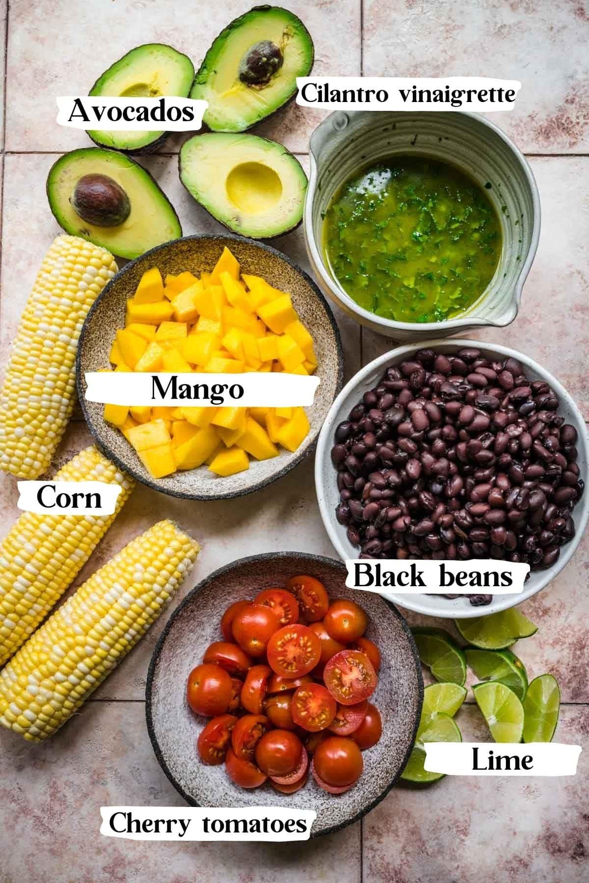 overhead view of ingredients for black bean mango salad.